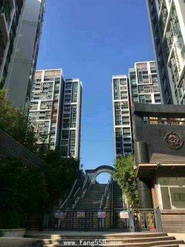 公明村委统建楼7栋1200户的超大花园社区比商品房还漂亮两梯四户