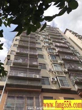 宝安西乡固戍地铁口500米-西昌公寓 开发商推出保留房源20套 户户