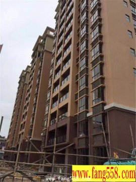 塘厦新楼盘【凤凰广场】3栋11层两梯11户,顶层复式
