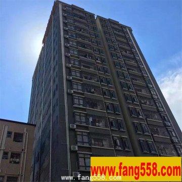 沙井小产权房沙井天虹商场500米 《青年公寓》共360套房源投资最