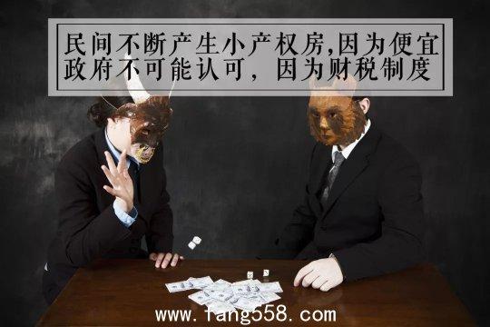 小产权房犹如超生的孩子 政府拆不掉也不敢合法化董藩-北京师范大学房地产研究中心主
