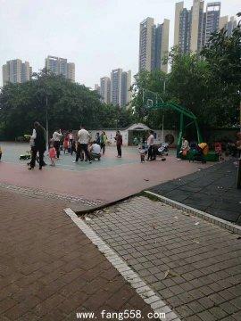 深圳龙华小产权房民治上塘地铁站【星河亮居】盛大开盘