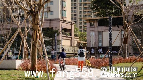 宝安首座景观公园四季花园开园了 市民又有好去处