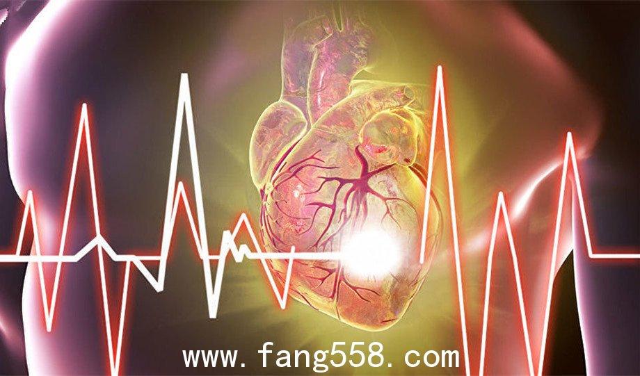 美国专家:能量饮料对心脏有害