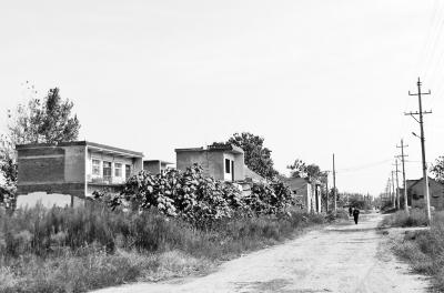 河南出台政策规范农村住宅建设 小产权房被禁