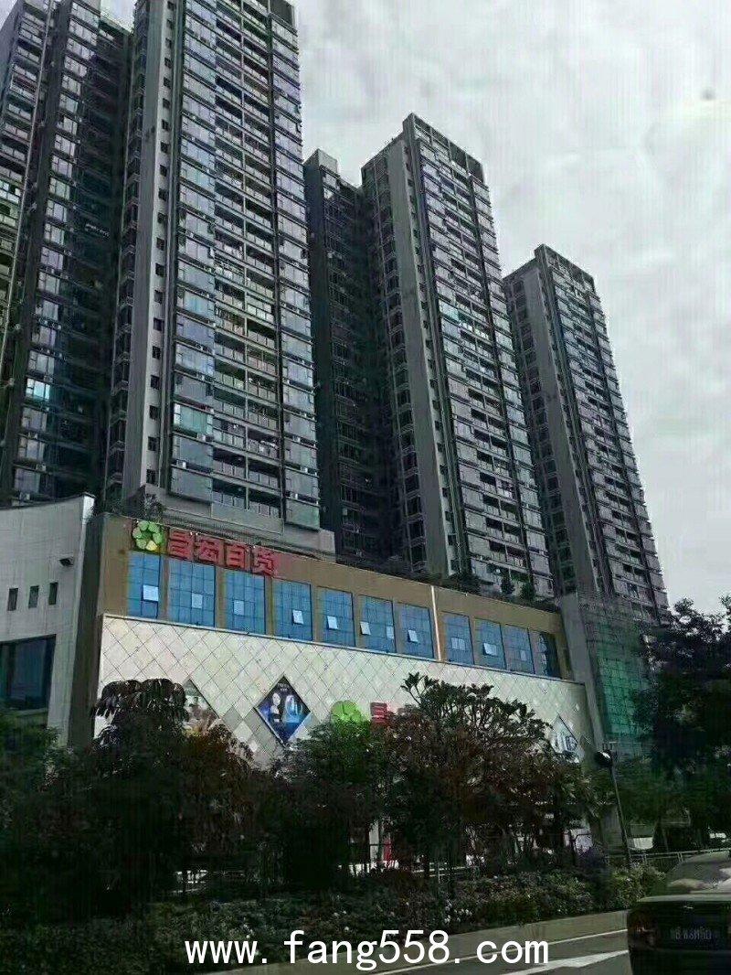 福永凤凰山村委统建楼