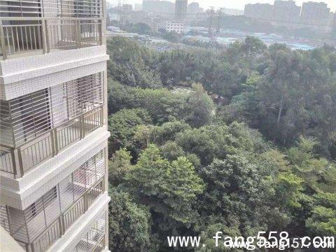 松岗小产权松岗碧头地铁口300米,公园里的房