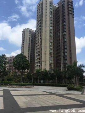 沙井小产权房6栋大型深圳村委统建楼