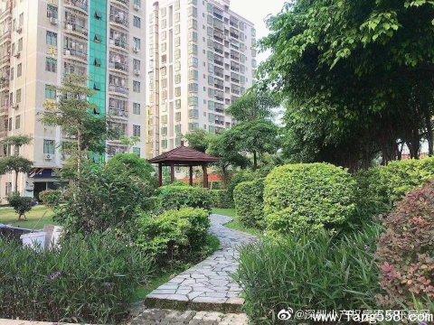 深圳坂田小产权房五和公园里怎么样?值得购买吗?