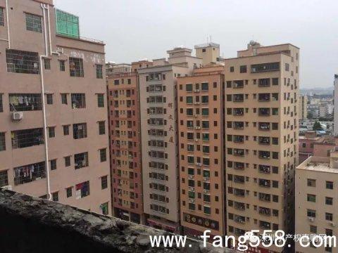 深圳龙华上塘地铁站小产权房:上塘学府29.8万离上塘地铁口走路几分钟