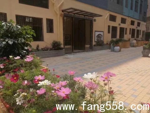 固戍海景小产权房 悦海新天地 固戍200套两栋花园式小产权房特价36万一套